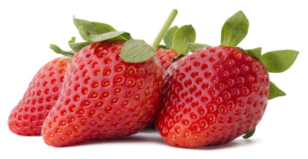 A closeup image of four ripe strawberries on a white background. June is a great time for fresh strawberries in many regions.